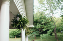 fern and wind chimes hanging on a porch