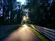 warm summer sunlight on a rural road