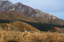 brown brush and mountain peaks