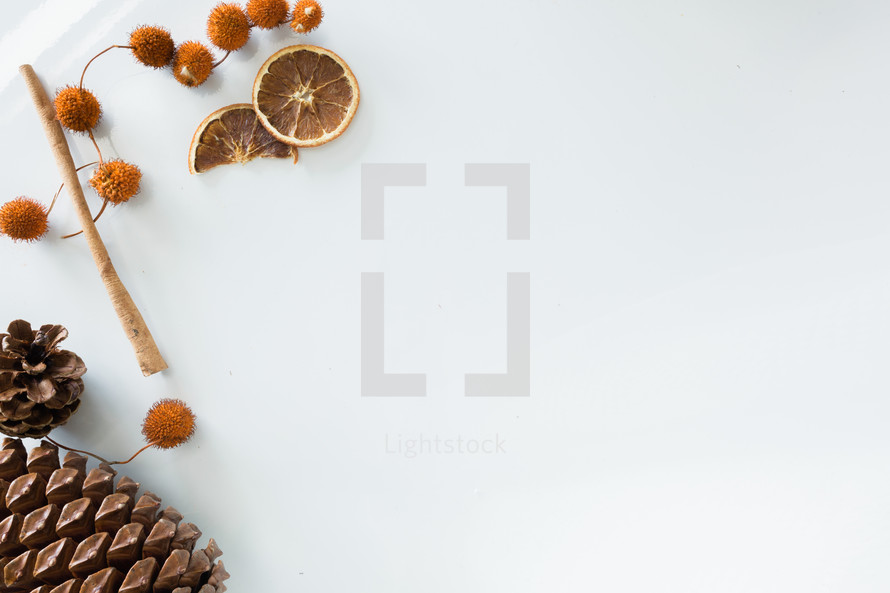 fall items on a white background