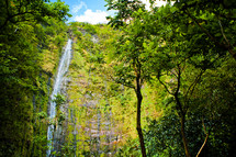 waterfall off the side of a green cliff in a jungle