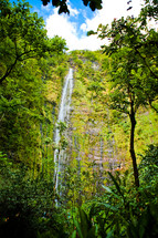waterfall off a cliff in a jungle