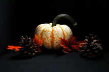 pine cones, fall leaves, and orange and white pumpkin on a black background