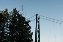 bridge cables