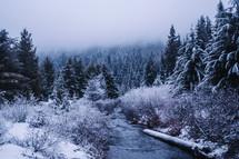 A icy stream