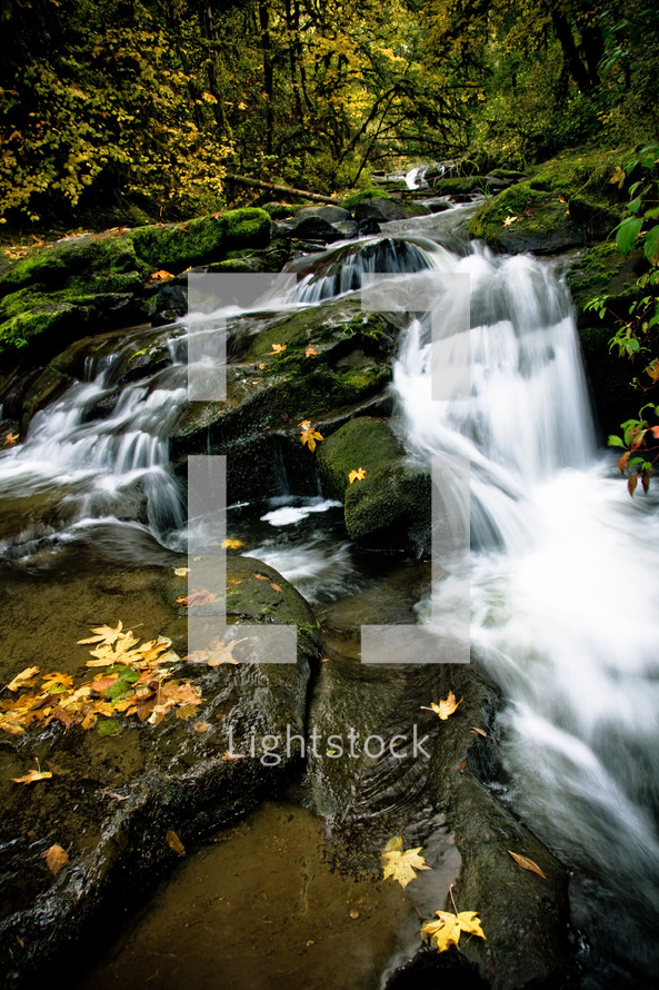 downhill flowing McDowell creek