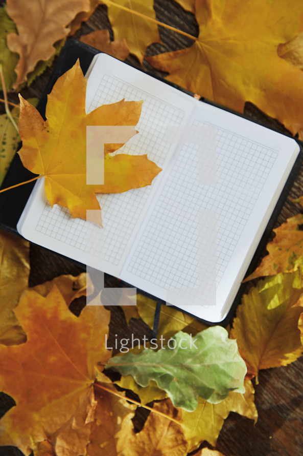 open notebook on fall leaves