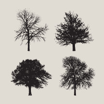 Pack of vector trees.