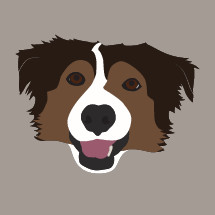 border collie dog illustration