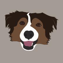 border collie dog illustration