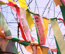 Wishes for peace attached to barbed wire at the Demilitarized Zone between North and South Korea.