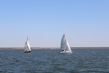 sailboats on the water