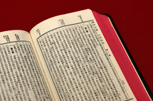 pages of a Chinese Bible