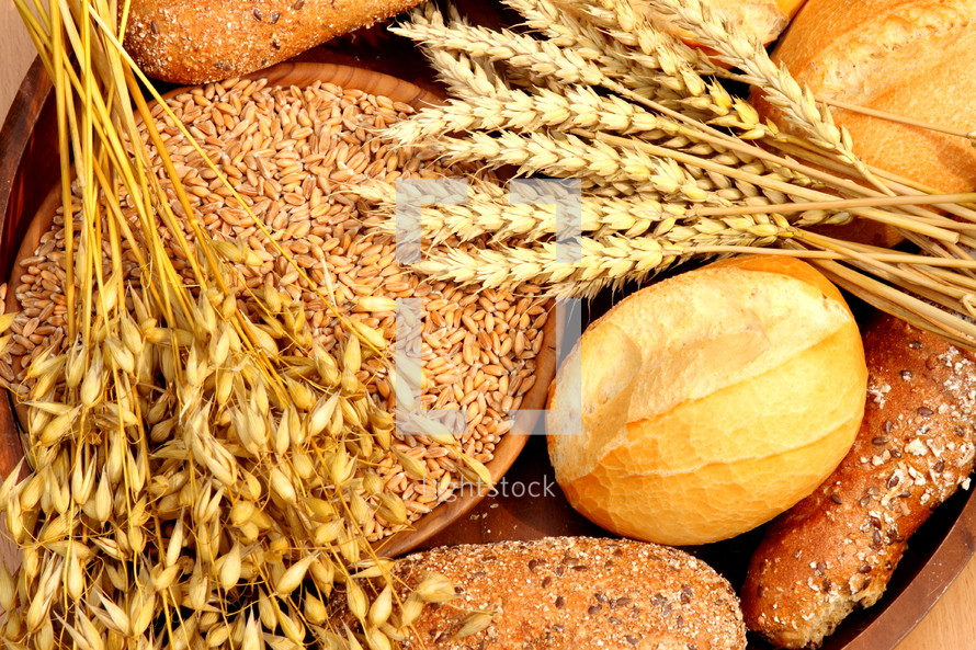 bowl of grains and wheat