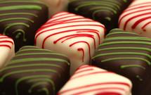 assorted gourmet chocolates