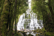 a cascading waterfall in a forest