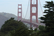 Golden Gate Bridge seen from the trees in the distance