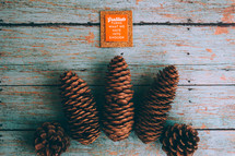 pine cones and words gratitude turns what we have into enough