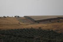 landcape scene