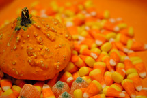 Gourd on a bed of candy for Halloween or Thanksgiving.