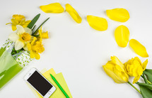 yellow flower border, iPhone, pen, paper, petals, flowers, border, daffodils, white background, spring