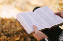 Open Bible During Fall