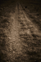 A man walking down a dirt road