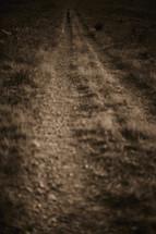 A man walking down a dirt road