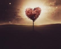 Heart tree at dusk.
