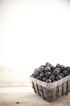 Fresh blueberries in plastic punnet