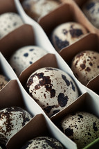 box of decorated Eggs
