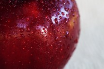 A close up look at a red apple