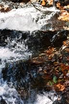 water flowing in a stream near fallen leaves