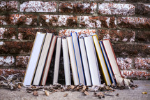 row of books outdoors against a brick wall