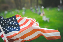 American flags in a cemetery