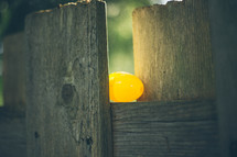 hidden Easter egg in a fence