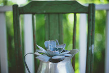 silver pitcher with succulent plant