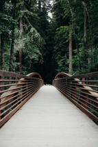 footbridge path into a forest