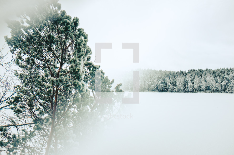 fogged lens and a winter scene