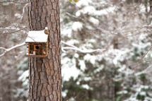 a bird house on a tree trunk in winter
