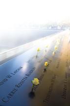 yellow roses in the 9/11 memorial