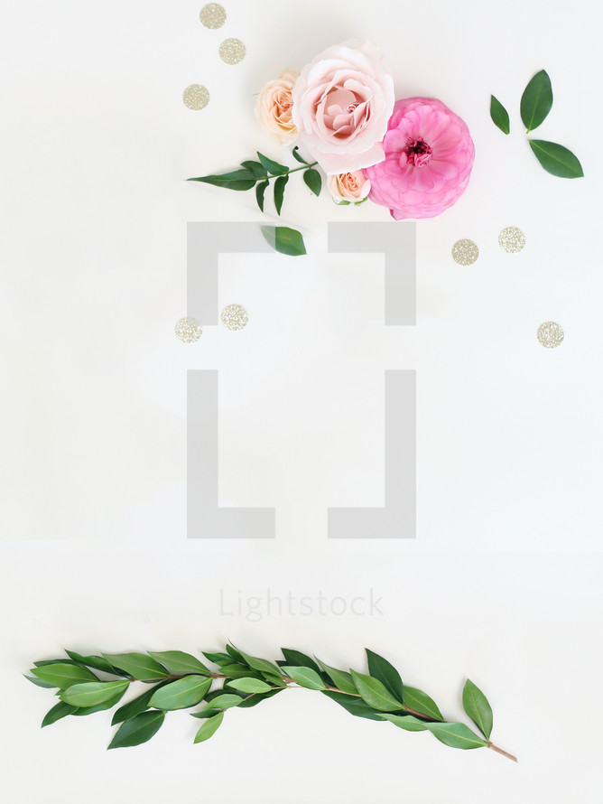 leaves and flowers on a white background