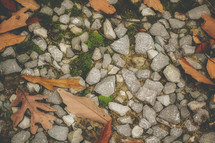 gravel and fall leaves