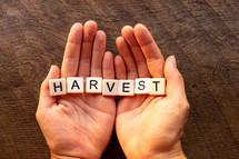 cupped hands with the word harvest