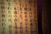 Text John 3: 16 (in Japanese)