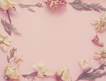 Dried flowers form a border on pink paper