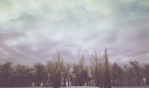 cold and peaceful winter background