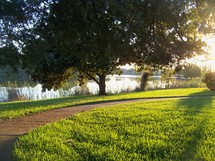 Rays of the afternoon sun - The sun sets over a lake and grassy knoll in a fall summer day.