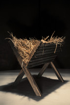 Empty manger filled with hay.