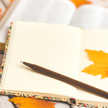 journal, pen, and open Bible, on fall leaves